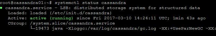 cassandra_cluster_installation_5.JPG
